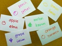 Flash card di lingua; Turco fotografie stock libere da diritti