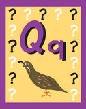Flash Card Letter Q nouns. Stock Image