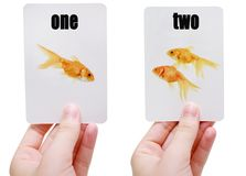 Flash cards stock photography