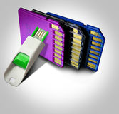 Flash drive memory cards Stock Photography