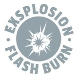 Flash explosion logo, simple gray style. Flash explosion logo. Simple illustration of flash explosion vector logo for web Royalty Free Stock Photography