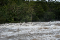 Flash flood-Flash flood in Thailand. Stock Photography