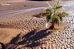 Flash flood leaves a muddy landscape Royalty Free Stock Photography