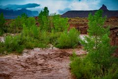 Flash Flood Waters flows through the Canyonlands Needle District. Flash Flood Waters after the storm flows through the Canyonlands Needle District Utah USA royalty free stock photos