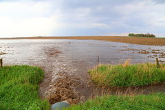 Flash Flooding. Runoff from heavy rainfall leads to flash flooding in nearby farm field stock images