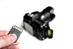 Flash Memory Card SD for Camera Digital Royalty Free Stock Images
