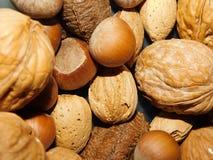 Flash Mixed Nuts royalty free stock photo