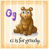 Flashcard信件G是为北美灰熊 向量例证