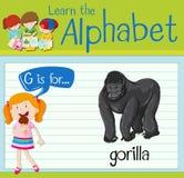 Flashcard信件G是为大猩猩 向量例证