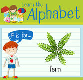 Flashcard alphabet F is for fern Stock Photography