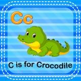 Flashcard bokstav C är för krokodil stock illustrationer