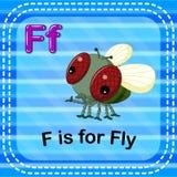 Flashcard bokstav F är för fluga stock illustrationer