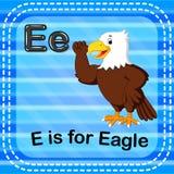 Flashcard-Buchstabe E ist für Adler stock abbildung