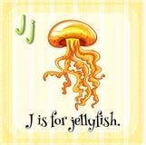 Flashcard-Buchstabe J ist für Quallen Lizenzfreie Stockbilder
