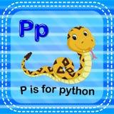 Flashcard-Buchstabe P ist für Pythonschlange lizenzfreie abbildung