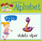 Flashcard-Buchstabe V ist für Veilchenviper Stockfotos