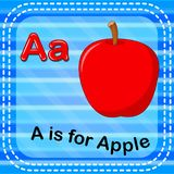 Flashcard letter A is for apple Stock Image