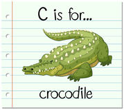 Flashcard letter C is for crocodile Royalty Free Stock Photo