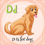 Flashcard letter D is for dog Royalty Free Stock Photos
