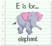 Flashcard letter E is for elephant. Illustration Stock Photography