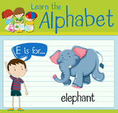 Flashcard letter E is for elephant. Illustration Royalty Free Stock Image
