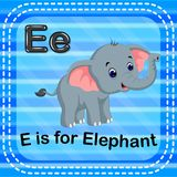 Flashcard letter E is for elephant. Illustration of Flashcard letter E is for elephant Stock Photos