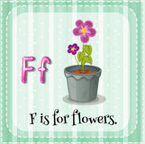 Flashcard letter F is for flowers Royalty Free Stock Images