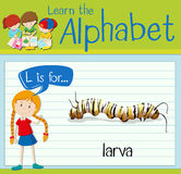 Flashcard letter L is for larva. Illustration Stock Images