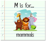 Flashcard letter M is for mammals Royalty Free Stock Photos