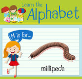 Flashcard letter M is for millipede Stock Images