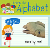 Flashcard letter M is for moray eel. Illustration Royalty Free Stock Images