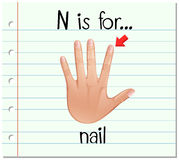 Flashcard letter N is for nail Royalty Free Stock Image