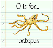 Flashcard letter O is for octopus Royalty Free Stock Image