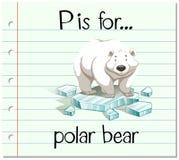 Flashcard letter P is for polar bear Stock Photography
