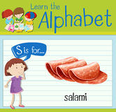 Flashcard letter S is for salami Stock Photography