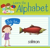 Flashcard letter S is for salmon Royalty Free Stock Photography