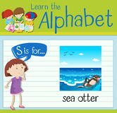 Flashcard letter S is for sea otter Stock Photos