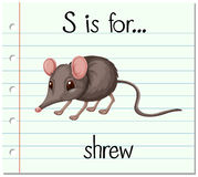 Flashcard letter S is for shrew Stock Photo