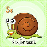 Flashcard letter S is for snail Stock Photography