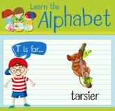 Flashcard letter T is for tarsier. Illustration vector illustration