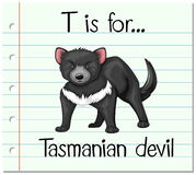 Flashcard letter T is for tasmanian devil Stock Images