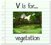 Flashcard letter V is for vegetation Stock Photos