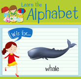 Flashcard letter W is for whale Royalty Free Stock Images