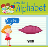 Flashcard letter Y is for yam Stock Photos