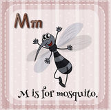 Flashcard of M is for mosquito Stock Photos