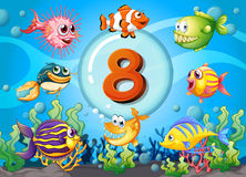 Flashcard number eight with 8 fish underwater. Illustration Stock Images
