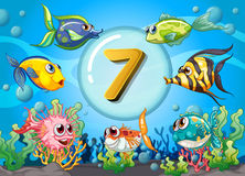 Flashcard number seven wit 7 fish underwater. Illustration Stock Photos