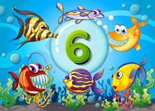 Flashcard number six with 6 fish underwater. Illustration Royalty Free Stock Image
