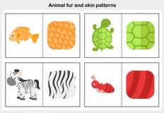 Flashcards animal fur and skin pattern. Fish, zebra, turtle, tortoise - Worksheet for education stock illustration