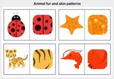 Flashcards zwierzęcy futerko i skóra wzór ilustracja wektor